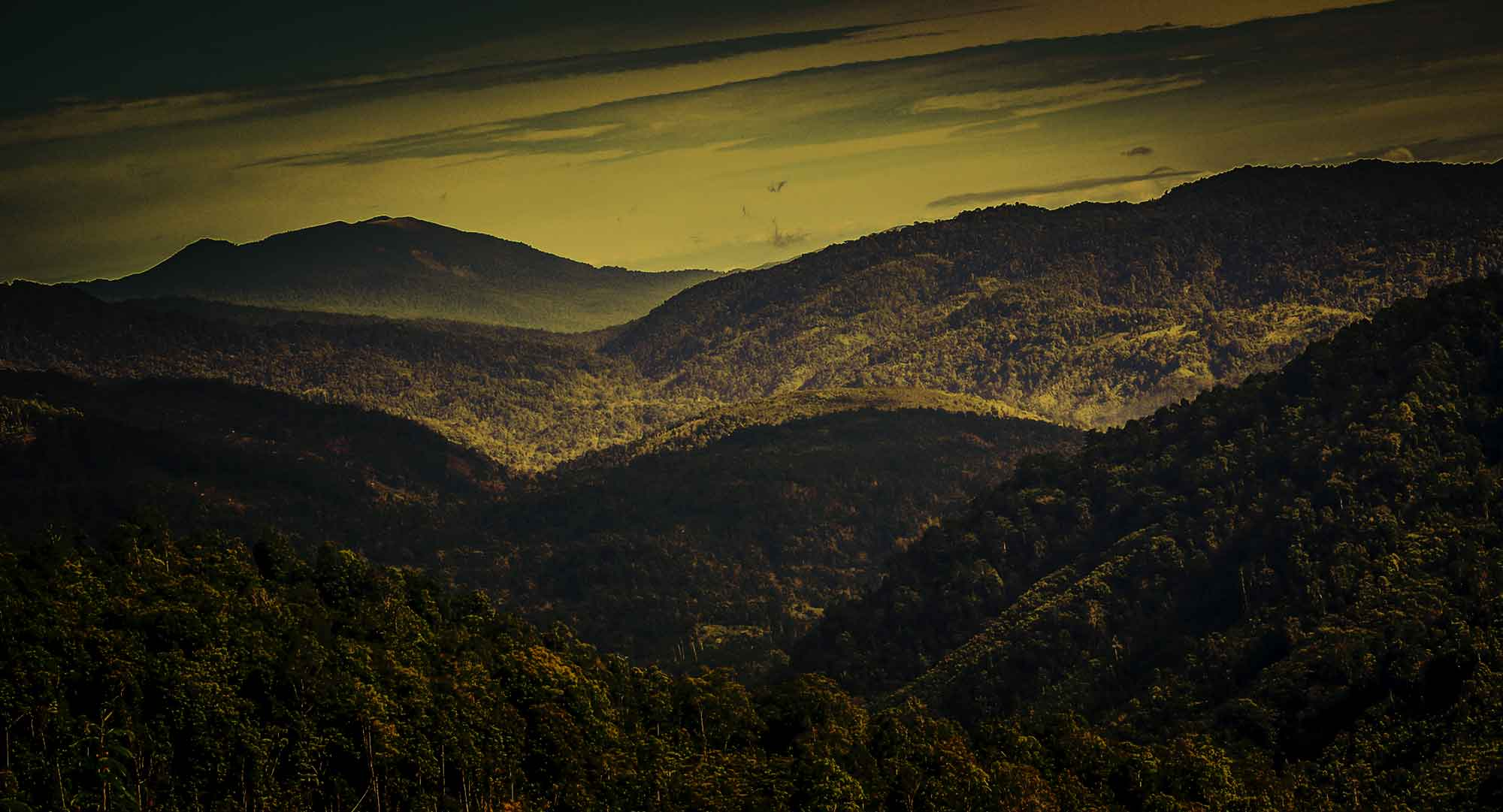 Highland-Mandailing;-photo-taken-from-Gibbon-Ridge-on-the-MEC-plantation